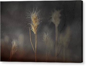 Escape Into The Background Canvas Print