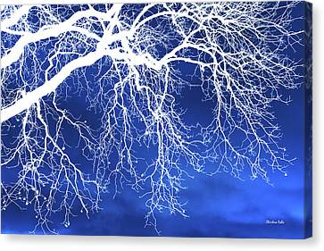 Escaping The Blues Weeping Tree Art Canvas Print by Christina Rollo