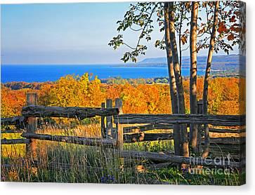 Collingwood Canvas Print - Escarpment Fall Colors by Charline Xia