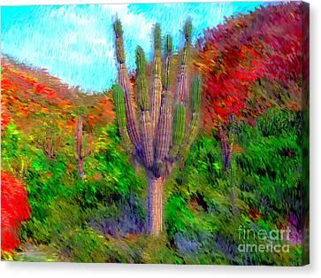 Espiritu Santo Cactus 2 Canvas Print by Gerhardt Isringhaus