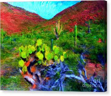 Espiritu Santo Cactus 3 Canvas Print by Gerhardt Isringhaus