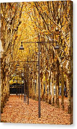Esplanade Des Quinconces Park Canvas Print by Panoramic Images