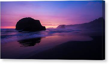 Essence Canvas Print by Chad Dutson