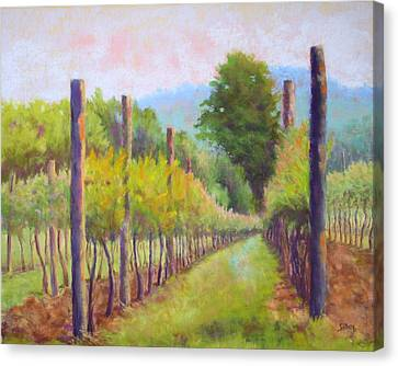 Estate Pinot Canvas Print by Nancy Jolley