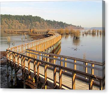 Canvas Print featuring the photograph Estuary Boardwalk Trail by I'ina Van Lawick