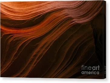 Etched In Stone Canvas Print by Mike Dawson