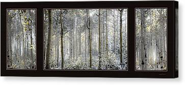 Etheral Forest Triptych Canvas Print by Leland D Howard