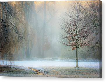 Ethereal Daybreak Canvas Print