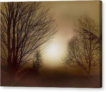 Canvas Print featuring the photograph Ethereal Evening by Micki Findlay