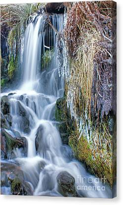 Ethereal Flow Canvas Print