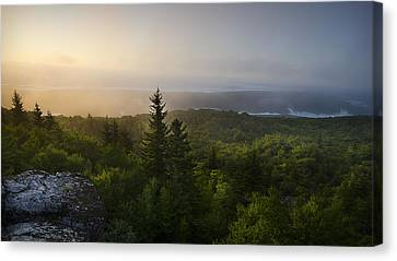 Ethereal Canvas Print by Michael Donahue