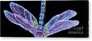 Ethereal Wings Of Blue Canvas Print by Kimberlee Baxter