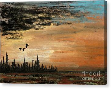 Evading A Storm Canvas Print by R Kyllo