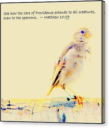 Even Sparrows Matter Canvas Print by Kathy Barney