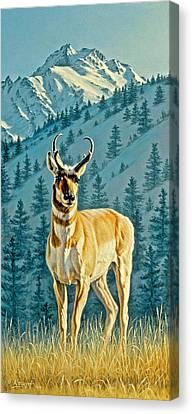 Evening Below Electric Peak Canvas Print by Paul Krapf