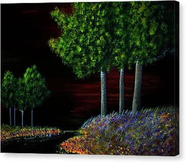 Evening Dream Canvas Print by Tim Townsend