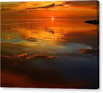 Evening Fishing Canvas Print by Stuart Harrison