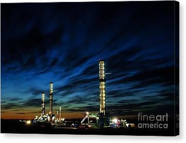Evening Glory 2 Canvas Print