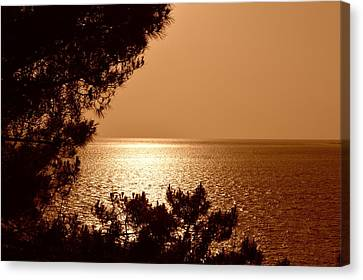 John Tidball Canvas Print - Evening Glow by Bishopston Fine Art