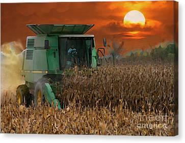 Evening Harvest Canvas Print by E B Schmidt