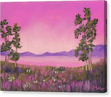 Evening In Pink Canvas Print