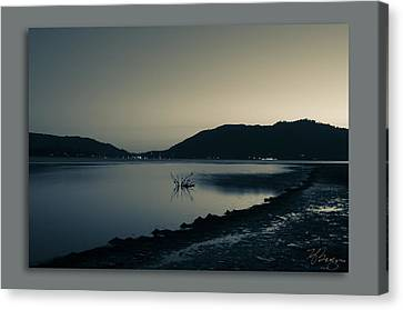 Canvas Print featuring the photograph Evening by Kevin Bergen