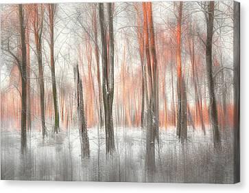 Winter Light Canvas Print - Evening Light by Gustav Davidsson