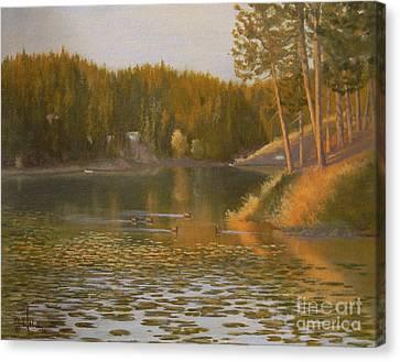 Evening Light On Avondale Canvas Print