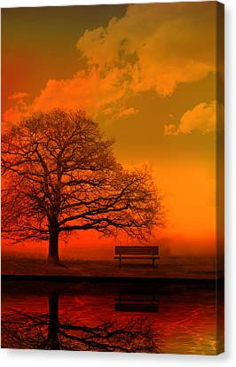 Evening Canvas Print by Mark Rogan