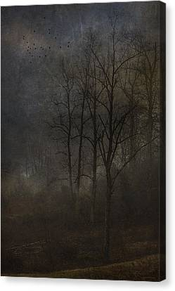 Evening Mist Canvas Print by Ron Jones