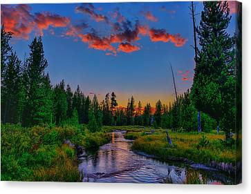 Evening On Lucky Dog Creek Canvas Print by Greg Norrell
