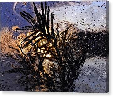Evening Plant Canvas Print