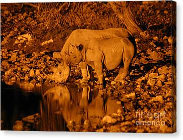 Evening Reflection Canvas Print by Alison Kennedy-Benson