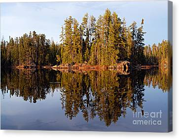 Evening Reflections On Snipe Lake 1 Canvas Print by Larry Ricker