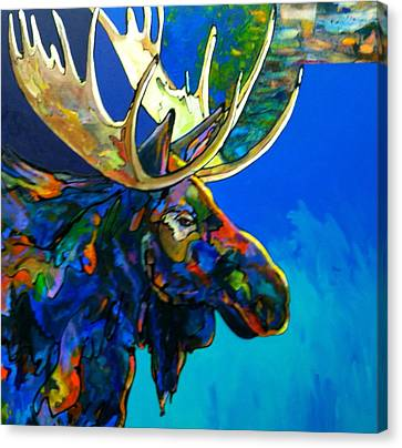 Evening Shadows Canvas Print by Bob Coonts