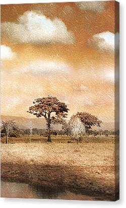Evening Showers Canvas Print by Holly Kempe