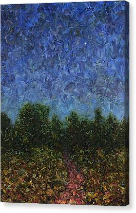 Evening Star Canvas Print by James W Johnson