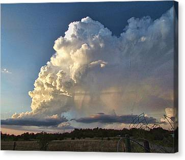 Evening Storm Canvas Print by Shannon Story