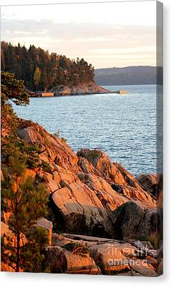 Evening Sun By The Waterfront Canvas Print