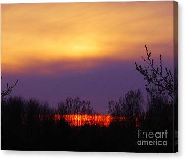 Evening Sunset Lake Canvas Print by Judy Via-Wolff