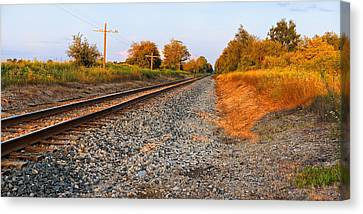 Evening Tracks Canvas Print