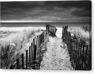 Evening Wave Check Bw Canvas Print by Ryan Moore
