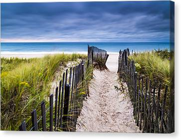 Flying Point Beach Vista Canvas Print by Ryan Moore