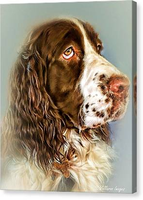 Ever Watchful English Springer Spaniel Canvas Print by Wallaroo Images
