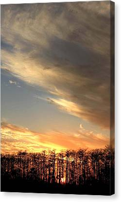 Everglades Clouds Canvas Print by AR Annahita