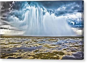 Everglades Downpour Canvas Print by Patrick M Lynch