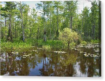 Everglades Lake Canvas Print by Rudy Umans