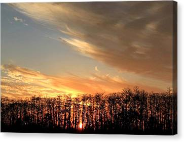 Canvas Print - Everglades Sunset by AR Annahita