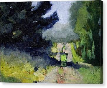 Wa Canvas Print - Evergreen Light by Nancy Merkle