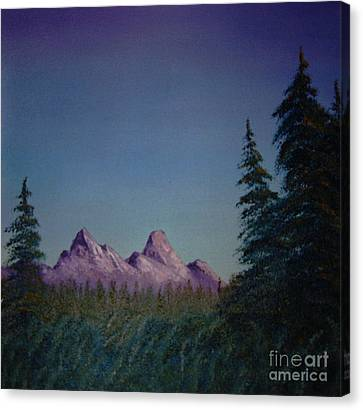 Evergreen Canvas Print by Stuart Engel